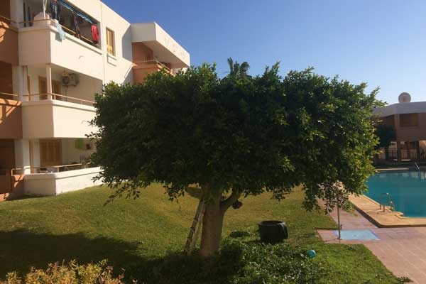 Natxomantenimiento | Turre | Spain Property Management | Areas Comunales | Communal Areas